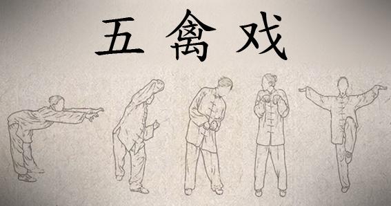 Medicina Tradicional China, Qi Gong, MTC, Cinco Animales